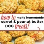 carrot and peanut butter dog treats