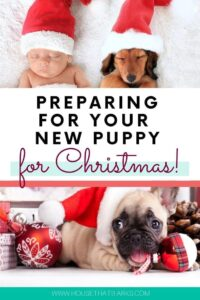 Preparing for your new puppy