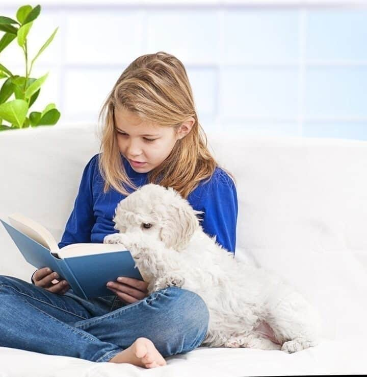 7 Easy Books for Kids to Read to the Dog