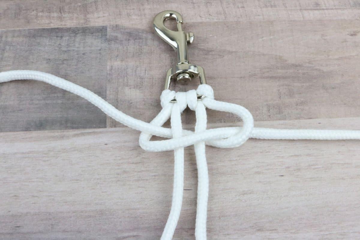 Step six dog leash