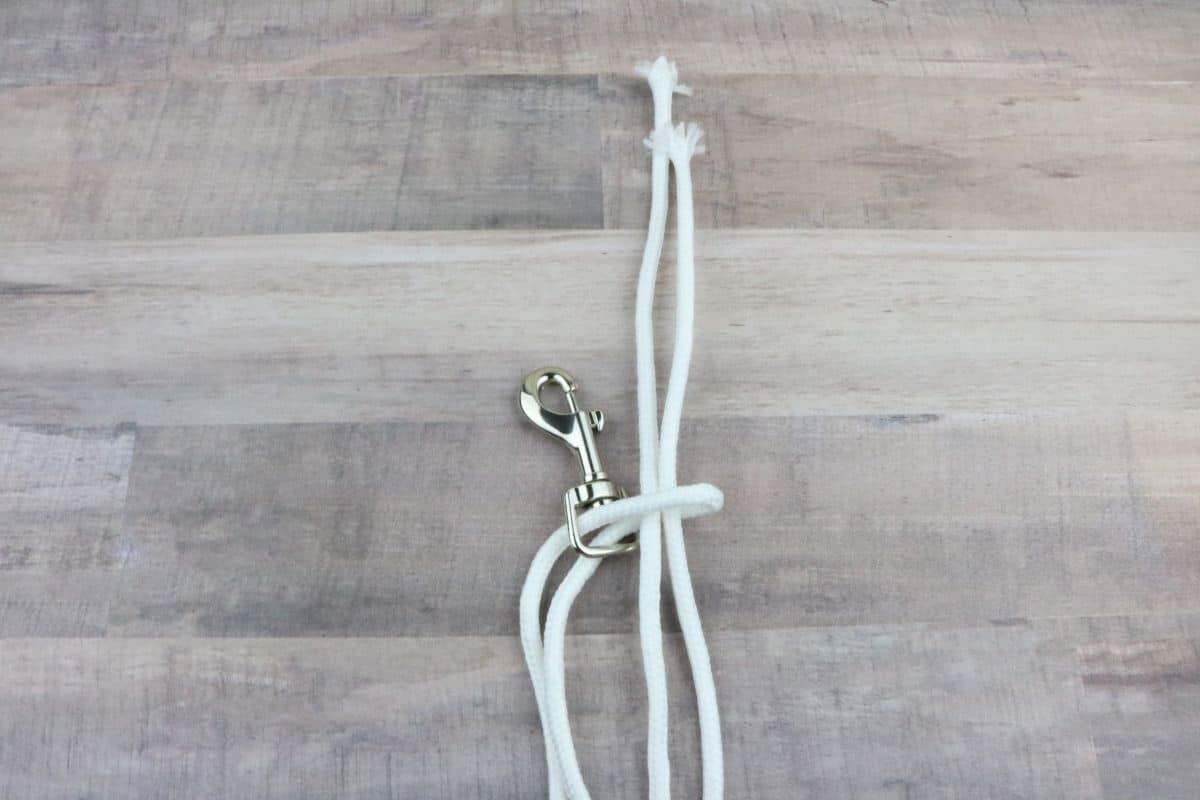 step three dog leash