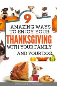 Thanksgiving with Dogs