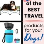 Travel Products of Dogs