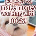 make money with dogs PIN