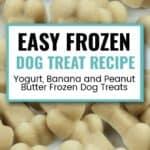 Yogurt, Banana and Peanut Butter Dog Treat Recipes
